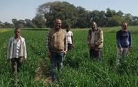 आत्मा योजना द्वारा श्री पद्धति (swi) से एक एकड़ में लगाया 10 किलो बीज, उपज होगी 25 क्विंटल