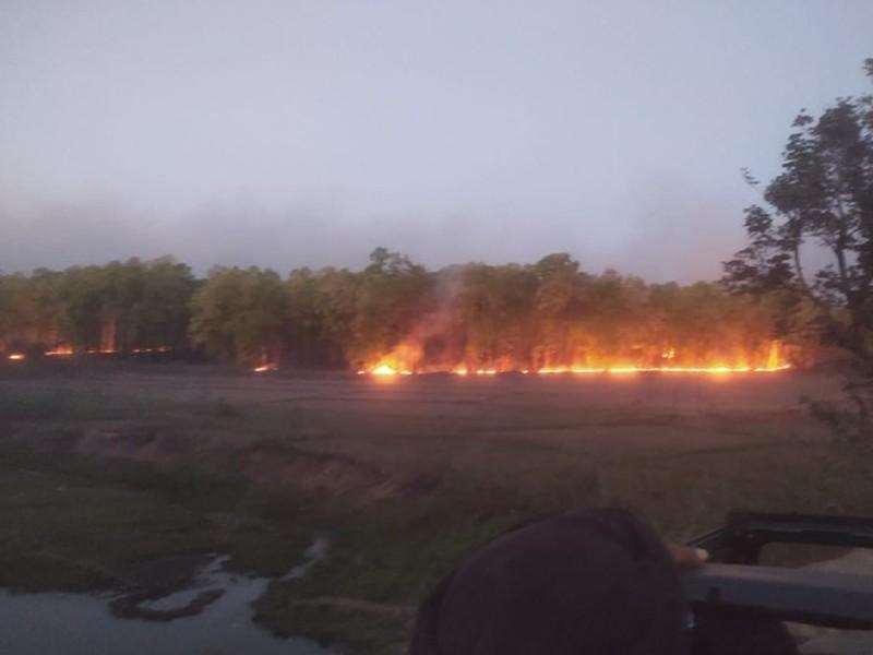 बांधवगढ के जंगलों में लगी 03 दिनों से आग , काबू पाया आज
