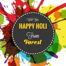 Stay healthy and Stay safe, Happy Holi