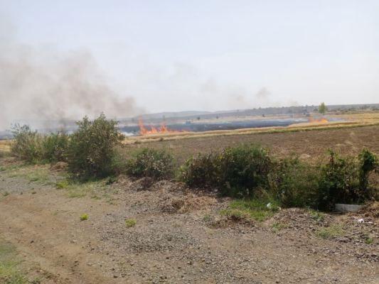 दो गाँवों में आग लगने से लाखों की फसल स्वाहा
