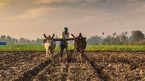 जानिए क्या हैं कृषि से जुड़े तीन बिल, जो अब बन गए हैं कानून   what is kisan  bill Which have now become laws