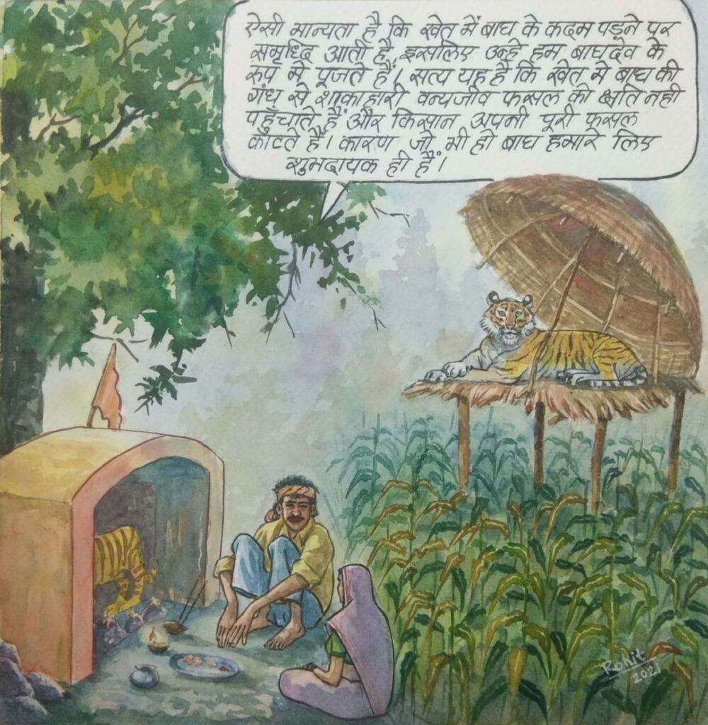 M.P: खेत में बाघ के कदम पडने से समृद्धि आती है-वनरक्षक रोहित शुक्ला