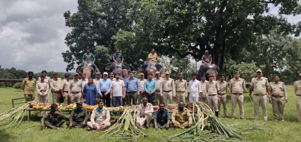 सिवनीः पेंच के हाथियो ने विशेष पकवानों का चखा स्वाद, प्रांरभ हुआ हाथी महोत्सव